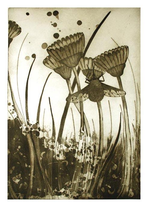 Bombilius Major by Sonja Dimovska. Image Courtesy the Artist.