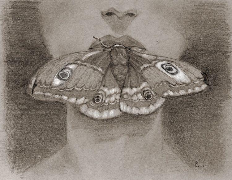 Moth Sepia by Michael Ellis